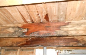 Roofers Weston super Mare flat roof repairs rotting wood support struts